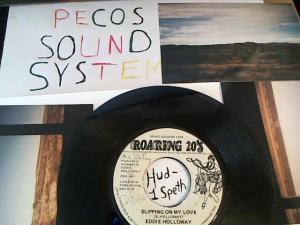 Hud-2 vinyl photos 660