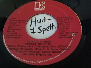 Hud-2 vinyl photos 1216