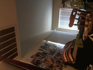 Hud-2 vinyl photos 941