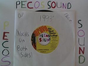 Hud-2 vinyl photos 1096