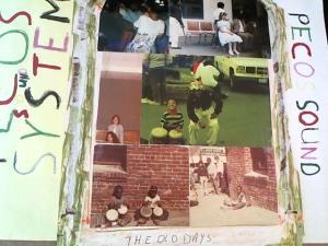 Hud-2 vinyl photos 2035