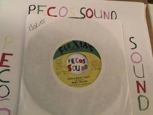 Hud-2 vinyl photos 2699