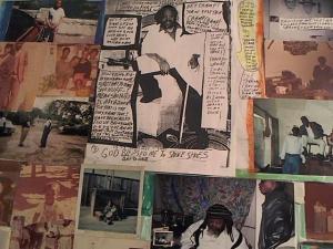 Hud-2 vinyl photos 2860