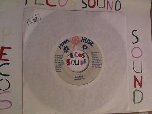 Hud-2 vinyl photos 2917