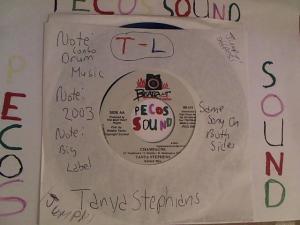 Hud-2 vinyl photos 3564