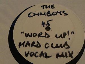 Hud-2 vinyl photos 3731