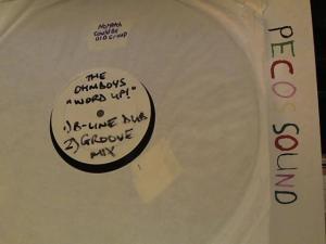 Hud-2 vinyl photos 3737