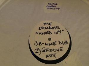 Hud-2 vinyl photos 3739