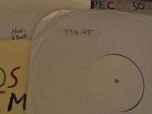 Hud-2 vinyl photos 3751