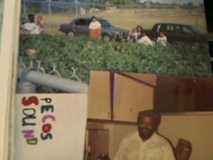 Hud-2 vinyl photos 4244