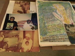 Hud-2 vinyl photos 4250
