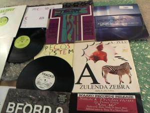Hud-2 vinyl photos 4790