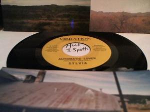 Hud-2 vinyl photos 5081