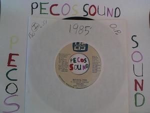 Hud-2 vinyl photos 1405