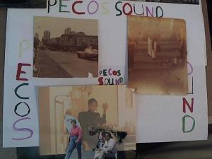 Hud-2 vinyl photos 1410