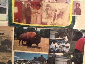 Hud-2 vinyl photos 1981