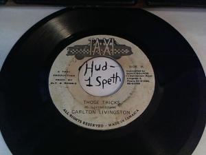 Hud-2 vinyl photos 2410