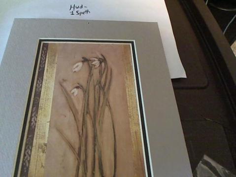 Hud-2 vinyl photos 133