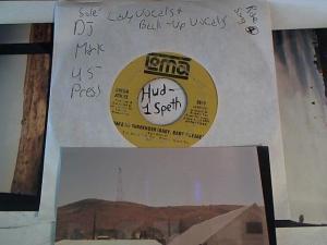 Hud-2 vinyl photos 3213
