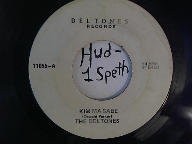Hud-2 vinyl photos 1496