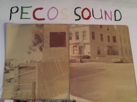 Hud-2 vinyl photos 2868