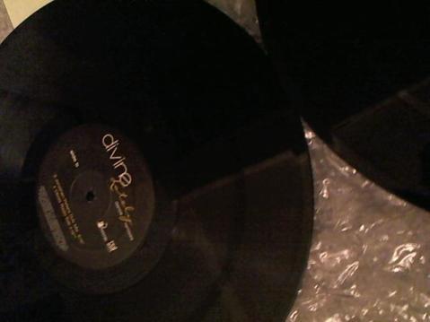 Hud-2 vinyl photos 3442
