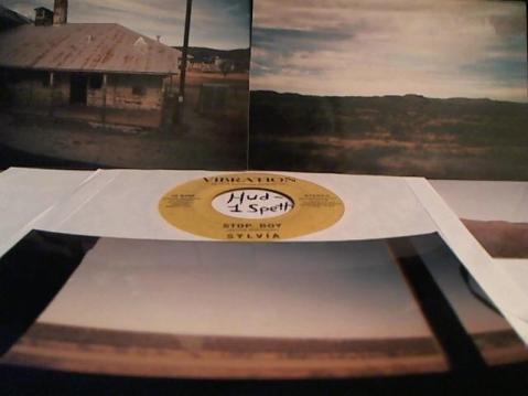 Hud-2 vinyl photos 5079