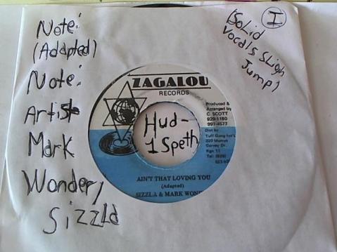 Hud-2 vinyl photos 649