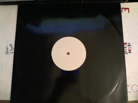 Hud-2 vinyl photos 3184