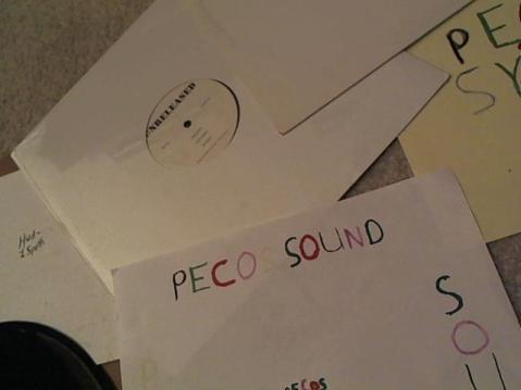 Hud-2 vinyl photos 3572