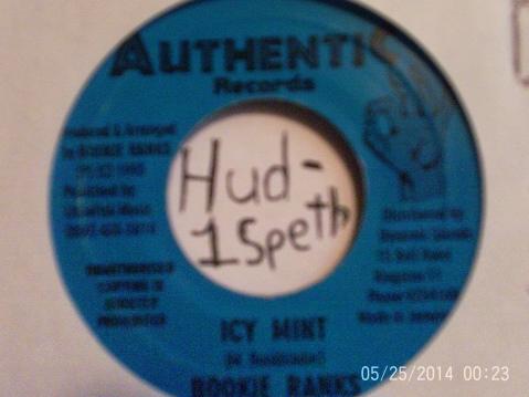 Hud-1 vinyl photos 052