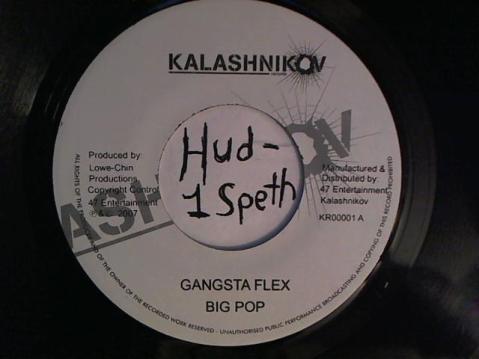 Hud-2 vinyl photos 2340
